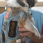 "Sode view of the Chihuahua Pekingnese Harley dog, his side patch on the jean jacket says ""I Got People"""
